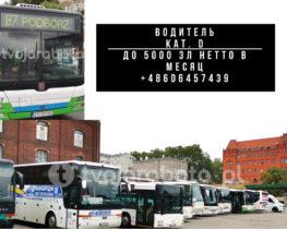 Водитель городких автобусов 2 | hr-freelance.com