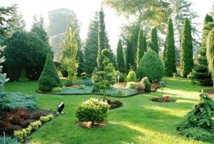 Озеленение территории 1 | hr-freelance.com